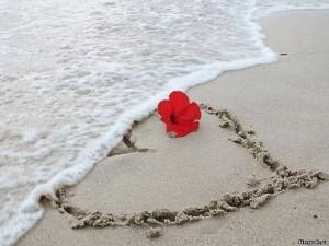 влюблённость и любовь